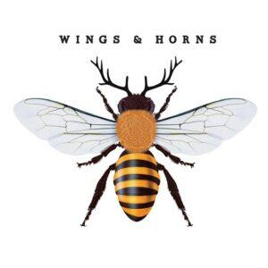 Wings & Horns